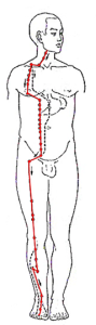 ST-r-body